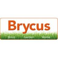 Brycus